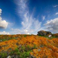 Красная земля :: Екатерина Светлова