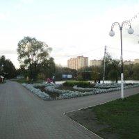 Наташинский парк в октябре. :: Ольга Кривых