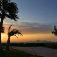 Утро и ветер :: галина северинова