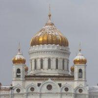 А в Москве снег... :: Юрий Кольцов