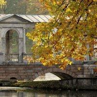 Палладиев мост :: Владимир Гилясев