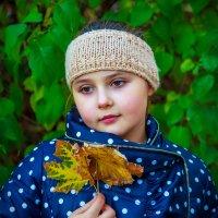 Осень. Радостная грусть. :: Анатолий. Chesnavik.