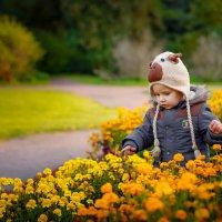 Осенняя прогулка :: Наталья Вендт Фотограф&Дизайнер