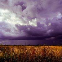 Великолепие стихии :: Дарья Киселева