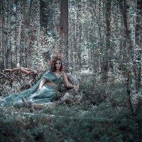 Лесные нимфы :: Анастасия Сидорина