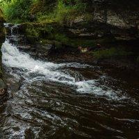 Лесной ручей :: алексей афанасьев
