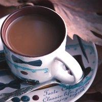 Осенний шоколад :: Nyusha