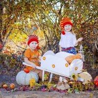 собирали урожай :: Катерина Терновая