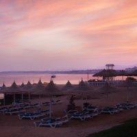 Розовый закат Египта :: Алена Бадамшина