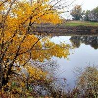 Слушает река паденье листьев... :: Лесо-Вед (Баранов)