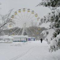 Зима :: Александр Алексеев