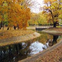 Осень :: Александр Алексеев