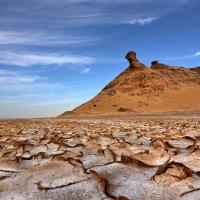 Сахара :: Leonid 44