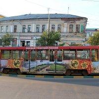 Трамвай :: Наталья Гусева