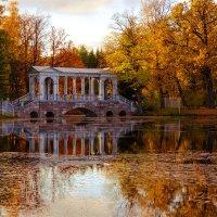 Золотая осень в Пушкине :: Алексей Морозов
