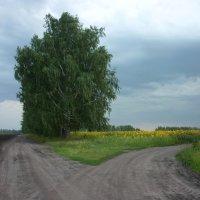 Две дороги... :: Любовь *