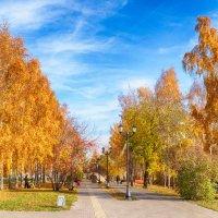 осенний парк :: Dmitry i Mary S