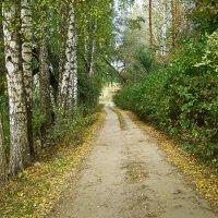 осень.дорога. :: юрий иванов