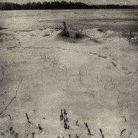 Озеро Таволги :: Caша Джус