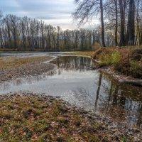Бродила осень у реки :: Любовь Потеряхина