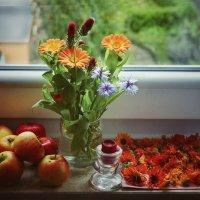 Осенние краски. :: Svetlana Sneg