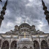 Новая мечеть. :: ALLA Melnik