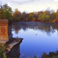 Осенний пруд :: Ирэна Мазакина