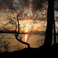 ...спускалось солнце каждый раз... :: Наталья Лунева