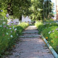 в парке :: Виктор Филиппов