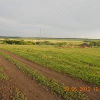 поле :: данющенко мария