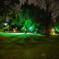 Осень 2015 г Ночью (3) :: Юрий Журавлев