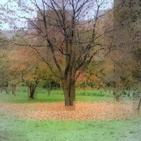 Осень в городе-призраке... :: Lilly