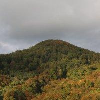 Каштановая гора осенью :: valeriy khlopunov