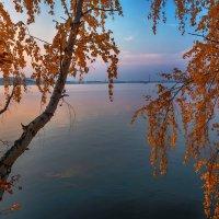 Золотая осень :: vladimir Bormotov