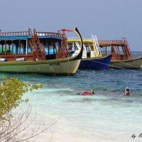 Мальдивы 18 :: Ekaterina Stafford