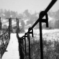 забытый мост :: Ирина Лепихина