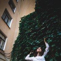 The Courtyards Of St. Petersburg :: Сергей Бабичев