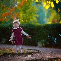 Осень :: Дарья Илькова