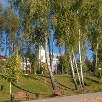 золотая осень :: Сергей Андрианов