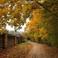 Теплая осень :: AstaA