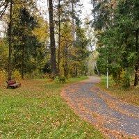 Осень в парке :: Леонид Иванчук