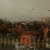 Дождь :: Elen Dol