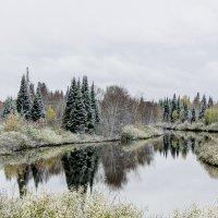 Первый снег... :: Дмитрий Багмет