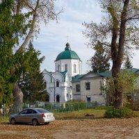Толшевский монастырь. :: Чария Зоя
