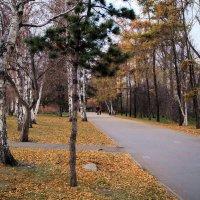 Осенним вечером в сквере... :: Александр Попов