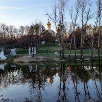 Утро в парке. :: Виктория Коплык