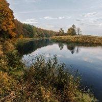 Берег реки :: Владимир Самсонов