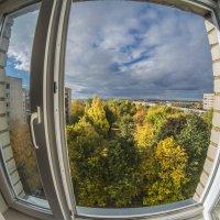 Окно в осень :: shvlad