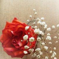 Подарок от сердца :: Ксения Мифэйр