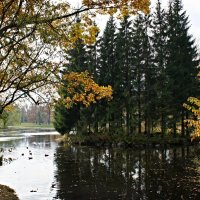 В Екатерининском парке :: Елена Павлова (Смолова)